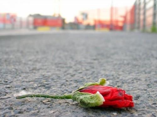 Giornata-mondiale-contro-la-violenza-sulle-donne-gli-uomini-siano-i-primi-a-mettere-sotto-accusa-chi-genera-violenza
