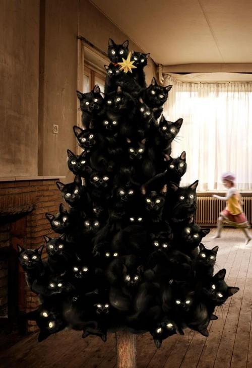 christmas cat2